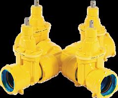 Combi-IV BAIO DN 80 PN 5 Gas